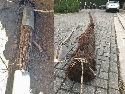 Local-Outdoor Pipes-drain unblocking Irlam-Manchester Sewer Serve Solutions